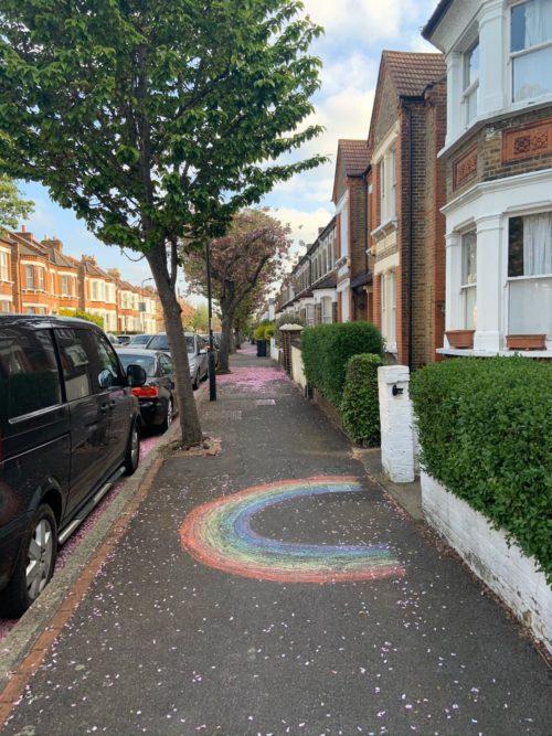 Rainbow in Bloom